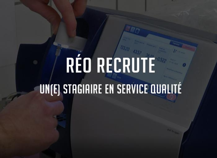 Recrutement stage fromagerie réo normandie manche lessay